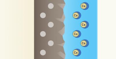 ルックプラスのバスタブクレンジングの洗浄成分が汚れの中からカルシウムを抜き取ることができる